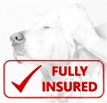 Fully Insured dog grooming
