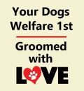 Dogs welfare 1st - dog grooming with love